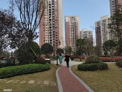 小区环境优美,绿化覆盖率高,干净整洁,内有健身器材和娱乐广场,物业服务态度好