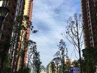 售太极新村一期房有产权证,可改三室2厅1卫92平米48万住宅