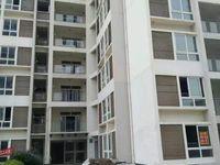 出售涪陵江东磨盘沟鸡爪坪3室2厅1厨1卫95平米清水房 电梯房出售 ,43万住宅