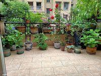 金科花园洋房,豪华装修,保持很好,拎包入住