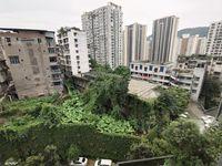 出租同景南门金阶1室1厅1卫58平米900元/月住宅